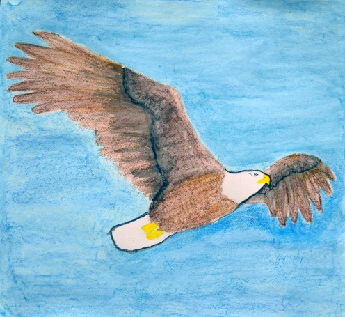 Eagle Challenge - Students' interpretations of the eagle, using their choice of materials.