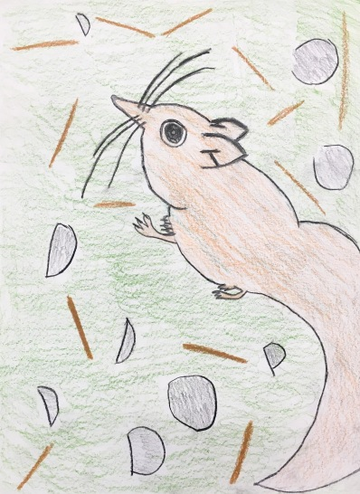 4th grade students practice observational drawing by creating hybrid creatures.